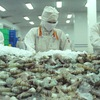 Vietnam's seafood exports recovering as contraction slows down