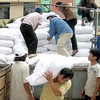 Over 3,590 tonnes of rice allocated to disaster-hit central provinces
