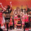 Vietnam's cultural quintessence promoted in France