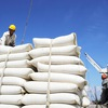 Price of rice export highest in past two years