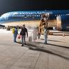 Nearly 300 Vietnamese citizens stranded in UAE repatriated
