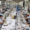 Circular on origin rules in EVFTA issued