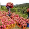Sustainability the goal for agricultural goods