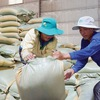 Vietnam rice exports to the Philippines reached over US$1 billion