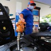 Petrol prices record fifth consecutive increase, up nearly VND400 per litre