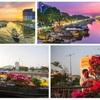 Tet flower market opens in Ho Chi Minh City