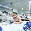 German newspaper highlights Vietnamese market's prospects