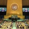 Vietnam and UNSC: From participant to partner for sustainable peace