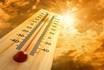 Những dấu hiệu cho thấy cơ thể sắp bị đột quỵ do nhiệt