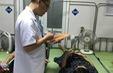 Phẫu thuật thành công sản phụ rau cài răng lược hiếm gặp