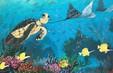 Bàn giao 12 bức bích họa 3D cho Khu bảo tồn biển Lý Sơn