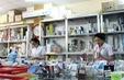 Không để tình trạng tăng giá thuốc đột biến trong dịp Tết Mậu Tuất 2018