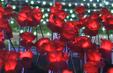 Đến với Lễ hội ánh sáng tại Nha Trang