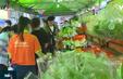 TP.HCM tái khởi động chợ phiên nông sản sạch