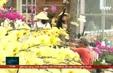 Lâm Đồng: hỗ trợ nông dân khi thị trường hoa tết gặp khó do covid .