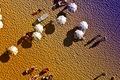 https://vtv1.mediacdn.vn/thumb_w/630/2015/15-best-drone-photos-2015-dronestagram-eric-dupin-34-880-1450687306917.jpg