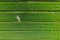 https://vtv1.mediacdn.vn/thumb_w/630/2015/4-best-drone-photos-2015-dronestagram-eric-dupin-49-880-1450687184972.jpg