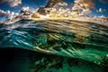 https://vtv1.mediacdn.vn/thumb_w/630/2015/6-bonaire-island-dutch-caribbean-5-vfvo-1433931613303.jpg