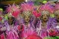 https://vtv1.mediacdn.vn/thumb_w/630/2015/carnival-brazil-12-18215-1424239039008.jpg