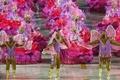 https://vtv1.mediacdn.vn/thumb_w/630/2015/carnival-brazil-7-18215-1424239038887.jpg