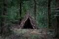 https://vtv1.mediacdn.vn/thumb_w/630/2015/surreal-forest-photograhy-ellie-davis-10-880-1425289985819.jpg