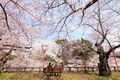 https://vtv1.mediacdn.vn/thumb_w/630/2016/spring-japan-cherry-blossoms-national-geographics-161-1458807729249.jpg