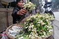 https://vtv1.mediacdn.vn/thumb_w/630/Uploaded/dinhhuong/2014_03_22/hoa_buoi2_220314.jpg