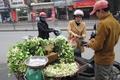 https://vtv1.mediacdn.vn/thumb_w/630/Uploaded/dinhhuong/2014_03_22/hoa_buoi4_220314.jpg