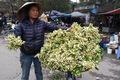 https://vtv1.mediacdn.vn/thumb_w/630/Uploaded/dinhhuong/2014_03_22/hoa_buoi_220314.jpg