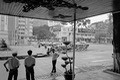 https://vtv1.mediacdn.vn/thumb_w/630/Uploaded/thuylinh/2014_02_24/vietnam11_1992.jpg