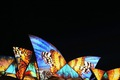 https://vtv1.mediacdn.vn/thumb_w/630/Uploaded/vananh/2014_05_28/140526103329-vivid-sydney-2014-butterflies-horizontal-large-gallery.jpg
