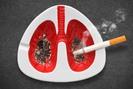 Hút thuốc lá - Thủ phạm của bệnh phổi tắc nghẽn mãn tính