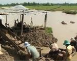 Bất chấp quy định, nông dân Trà Vinh ồ ạt bán đất mặt ruộng