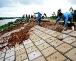 Bộ NN & PTNN: Tăng cường đảm bảo an toàn đê điều mùa lũ