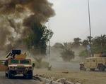 Cảnh sát Ai Cập nổ súng vào du khách do nhầm tưởng là khủng bố