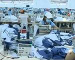 Việt Nam cần có cơ quan nghiên cứu cải thiện năng suất lao động - ảnh 1