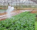JICA hỗ trợ Việt Nam phát triển chuỗi giá trị nông sản