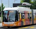 TP.HCM: Người dân được đi xe bus điện miễn phí