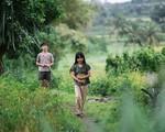 Đi tour Phú Yên qua những điểm quay 'Tôi thấy hoa vàng trên cỏ xanh'