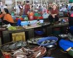 Các loại hải sản ở tầng nổi đều đảm bảo an toàn