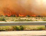 Cháy rừng tại Bồ Đào Nha gây ảnh hưởng lớn