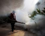 Số người nhiễm virus Zika tại Trung Quốc nâng lên 12 người