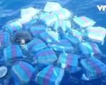 Mexico thu giữ gần 1 tấn cocaine trên biển Thái Bình Dương