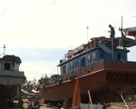 Nhiêu khê chi trả bảo hiểm tàu cá cho ngư dân