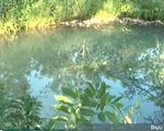 Bình Phước: Một học sinh lớp 9 thiệt mạng vì đuối nước