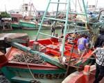 Gian nan tìm lao động đi biển, ngư dân bị lừa tiền