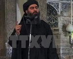 Thủ lĩnh IS Abu Bakr al-Baghdadi có thể đã bị tiêu diệt