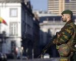 Afghanistan mở chiến dịch truy quét khủng bố