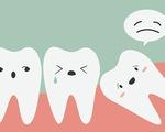 Sốc: Một thiếu niên phải nhổ cùng lúc 232 chiếc răng thừa - ảnh 1