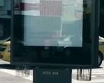 Biển quảng cáo có khả năng diệt muỗi